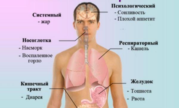 При гриппе возможен понос thumbnail