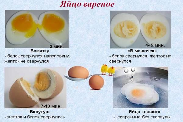 Разбираемся, можно ли есть яйца при диарее